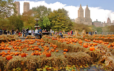 Top Travel PR Firm Says Plan for October Halloween Stories Now